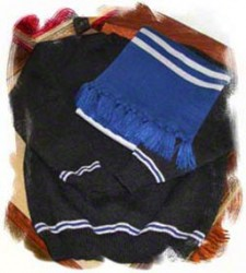 poa school sweater in blue and silver house colors